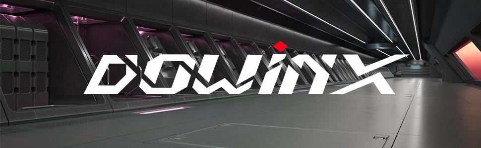 Dowinxとは