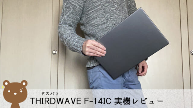 THIRDWAVE F-14IC レビュー